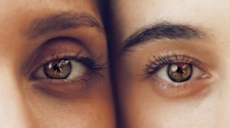 Close up image of two people showing just one of their brown eyes