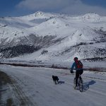 man on a bike with his dog on a lead in front of him. The background is white snowy hills.