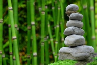 pile of grey stones stacked on top of one another with rows of green bamboo in the background. It represents creating a wellness sanctuary in your own back garden to reap the health and wellness benefits.